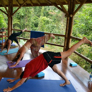 yoga-retreat-tropics